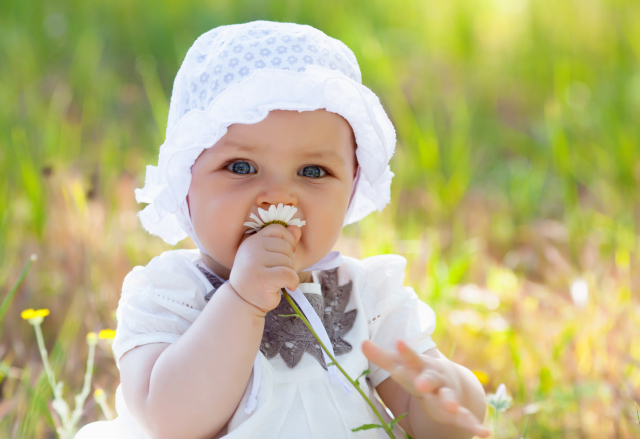 Baby on the meadow